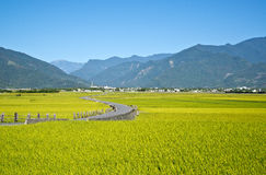 Пейзаж Тайваня сельский Стоковая Фотография