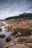 пейзаж Тасмания coles залива прибрежный Стоковое Изображение RF