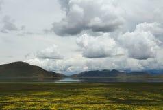Пейзаж Тибета Стоковые Изображения