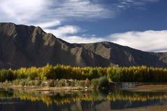 пейзаж Тибет высокого плато стоковые фотографии rf