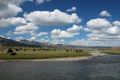 пейзаж Тибет Стоковое Фото