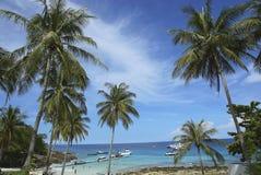пейзаж тропический Стоковые Фотографии RF
