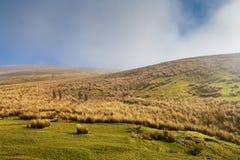 Пейзаж участков земли Йоркшира с туманом в расстоянии Стоковое Фото