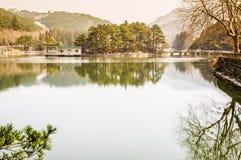 пейзаж фарфора естественный Стоковое Фото