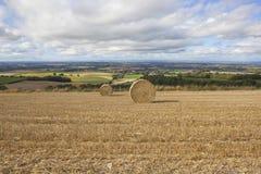 Пейзаж хлебоуборки Стоковое Изображение