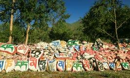 Пейзаж Цинхая Стоковые Фото