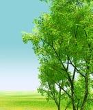 пейзаж чудесный Стоковая Фотография RF