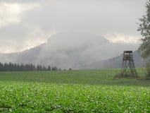 Пейзаж Швейцарии Saxon Стоковая Фотография