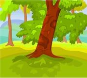 пейзаж 03 природ Стоковое Изображение