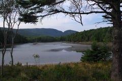 Пейзаж Acadia Стоковая Фотография