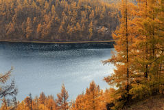 Пейзаж Arshaan Стоковое Изображение