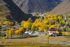 Пейзаж atumn плато Xinduqiao стоковая фотография