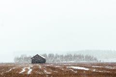 Пейзаж Snowy Стоковые Фотографии RF