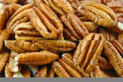 пеканы Стоковые Фотографии RF
