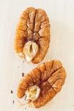 Пеканы Стоковое фото RF