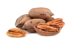 пекан иллюстрации предпосылки nuts безшовный Стоковая Фотография