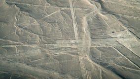 Пеликан как замечено в линиях Nasca, Nazca, Перу Стоковое Изображение RF