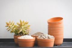 Пемзуйте камешки в cray баке и садовничая инструменте Стоковая Фотография