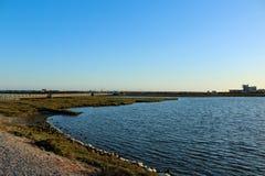 Пена моря на утесах на заболоченных местах Bolsa Chica Стоковая Фотография