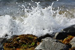 Пена моря стоковое изображение rf