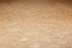 Пенистое месиво пива в винзаводе Стоковое Изображение RF