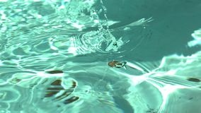 Пенни в воду фонтана сток-видео