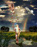 пенни рая Стоковая Фотография RF