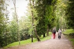 Пенсионеры на прогулке в природе Стоковые Фото