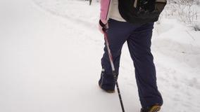 Пенсионер посредством специальных ручек идет в древесину зимы Женщина тренирует скандинавский шаг которые помогают акции видеоматериалы