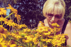 Пенсионер Heliopsis цветков женщины обнюхивая в саде Тонизированное фото Стоковое фото RF