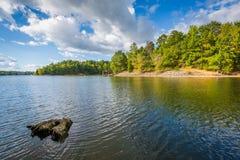 Пень дерева в озере Wylie, на природном заповеднике McDowell, в Charlo Стоковые Изображения RF