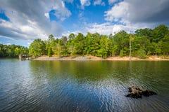 Пень дерева в озере Wylie, на природном заповеднике McDowell, в Charlo Стоковые Фото