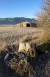 Пень и амбар в поле. Стоковые Фото