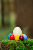Пень 12 пасхальных яя Стоковые Фотографии RF