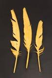 3 пера золота на черной предпосылке Стоковая Фотография