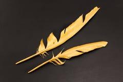 2 пера золота на черной предпосылке Стоковое Фото