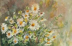 Первоначально картина акварели полевых цветков иллюстрация штока