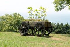 Первоначально flowerbed в форме старой вагонетки стоковое изображение rf