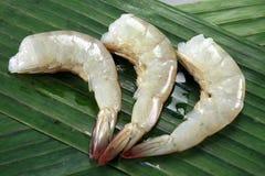 Первоначально тайский салат мозоли Стоковая Фотография RF