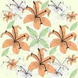 Первоначально флористическая предпосылка с оранжевыми лилиями Стоковое фото RF