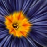 первоцвет стоковое изображение