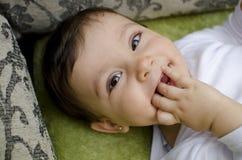 Первые зубы Стоковые Изображения RF