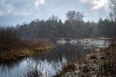 Первые падения снега стоковое фото rf