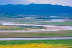 Первый гигантский разворот желтого реки Стоковое фото RF