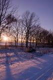 Первый день зимы покрытые Снег деревья в холмах снега f стоковые изображения rf