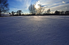 Первый день зимы покрытые Снег деревья в холмах снега f стоковые фотографии rf