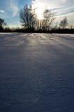 Первый день зимы покрытые Снег деревья в холмах снега f стоковые фото