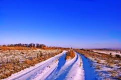 Первый день зимы покрытые Снег деревья в холмах снега f стоковое изображение rf