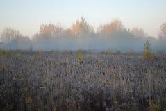 Первый заморозок, туман в утре осени в поле Стоковые Изображения