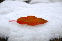 Первый поцелуй, первый снег Стоковая Фотография RF